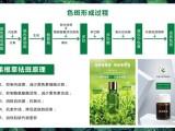 根果根草代謝根果原液加工-護膚品代加工工廠