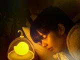 天蜗创意鸟笼灯usb充电小夜灯 LED智能触碰感应灯 卧室床头氛