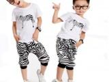 青岛原产地最新韩版卡通条纹斑马短袖哈伦裤男童套装,童装批发