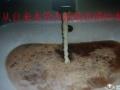 奉化专业自来水管道清洗-消毒服务