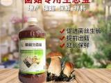 郑州益富源生产的菌菇生态宝如何卖