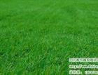 橡胶悬浮地板地垫地砖PVC地板人造草坪塑胶跑道厂家