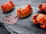 除了诗和远方 还有9月21号的阳澄湖大闸蟹上市