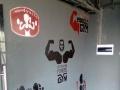 专业手绘工作室,承接各种背景墙 墙绘 墙画