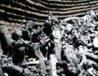 纯苹果木烧烤木炭,工业木炭,硅厂、铜厂用工业木炭