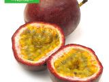 【世果汇】越南百香果12个 新鲜西番莲水果 榨果汁鸡蛋果