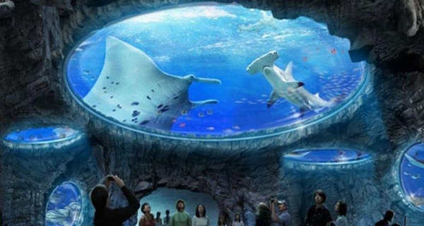 三明港澳旅游五天四晚海洋公园+迪士尼+半天自由活动
