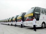 广州企业年会租大巴车,广州包车报价图片可选企业租车