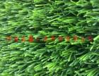 仿真草坪人造草坪塑料人工假草皮阳台幼儿园楼顶绿色地毯垫子装饰