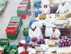 西安碑林高新雁塔莲湖未央蔬菜等食材专业配送