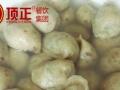 徐州江西芋子饺免加盟培训加盟