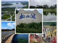 松山湖合建小产权房 花园小区松湖花园