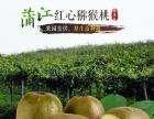 成都蒲江县电商淘宝装修 网站微信建设开发