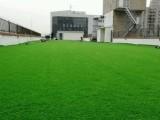 北京假草坪批發假草坪價格
