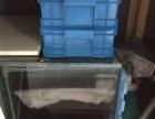观赏鱼专用鱼缸处理价格一千元!
