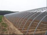 温室大棚当选弘康温室 蔬菜观光园造价