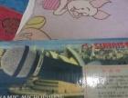全新飞利浦高清DVD,台湾家庭影院专用麦克风