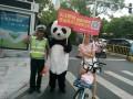 大熊猫当交警,教导市民礼让斑马线