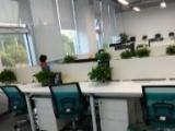 二手办公家具员工桌电脑桌大班台会议桌沙发低价出售