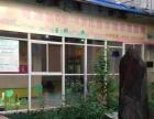 可迪尔早教中心常年招生,有暑假班,寒假班