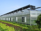 东莞厂房降温 首选利和 专注环保设备