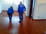 专业家庭保洁 地板打蜡 地毯清洗 玻璃清洗 清洗水晶灯油烟机