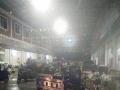 沙田土特产市场 其他 摊位柜台