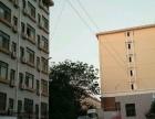 湘大 湘潭大学金翰林商业街 商业街卖场 10平米