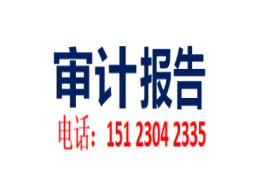 潼南财务收支审计报告 清算审计报告 增资验资报告