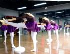 龙华民治瑜伽教练培训 8090瑜伽教练专职培训