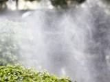 喷雾造景工程喷灌系统 专业雾化厂房 还你清凉清爽夏日