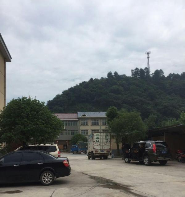 芷江 芷江县公坪镇胜利泡沫厂 厂房 2700平米