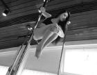 暑假招生-零基础钢管舞专业培训机构