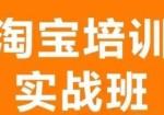 沈阳淘宝培训沈阳淘宝美工培训网店开店培训沈阳微信拼多多网页