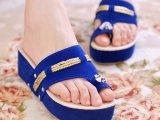 2014夏新品亮片人字拖坡跟厚底松糕跟凉拖鞋夹脚沙滩拖鞋女鞋子