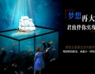 宜昌君致水族专业定制做龙鱼缸和水族箱