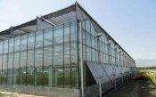 建光伏蔬菜大棚要多少钱-山东智能温室大棚