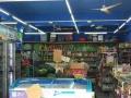 (个人转让)观澜田寮新村100平百货超市,十年老店
