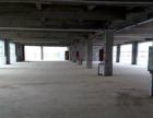 航海体育场附近 厂办一体科技园区 自贸区