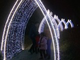 宣城大型灯光展出租 梦幻灯光节整套出售 灯光艺术制作