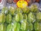 三亚 平价批发海南水果 特产