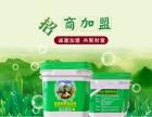 萍乡瓷砖粘结剂招商加盟 萍乡瓷砖粘结剂厂家批发 保合建材