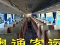 班车、旅游、商务用车或接机送机、会议用车、滑雪租车