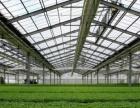 温室大棚pc工程板阳光板生态酒店观光室育苗室