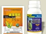 叶面肥技术为峰玉米叶面肥_全能胖墩玉米叶面肥_玉米控旺产品信息