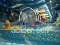 山东淄博超大型组装式儿童游泳池厂家