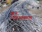 承德废电缆废电缆废铜回收多少钱