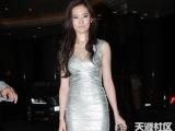 刘亦菲明星同款连衣裙 欧美风性感弹力紧身裙晚宴聚会高档晚礼服
