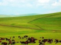 【较接近天堂的地方】西藏全线双卧休闲12日游