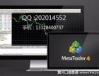 恒指外汇平台搭建MT4服务器数据源出租出售